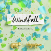 Blog Tour: Windfall – Review