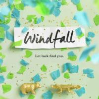 Blog Tour: Windfall – Review